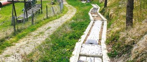 Association Suisse des Fibromyalgies